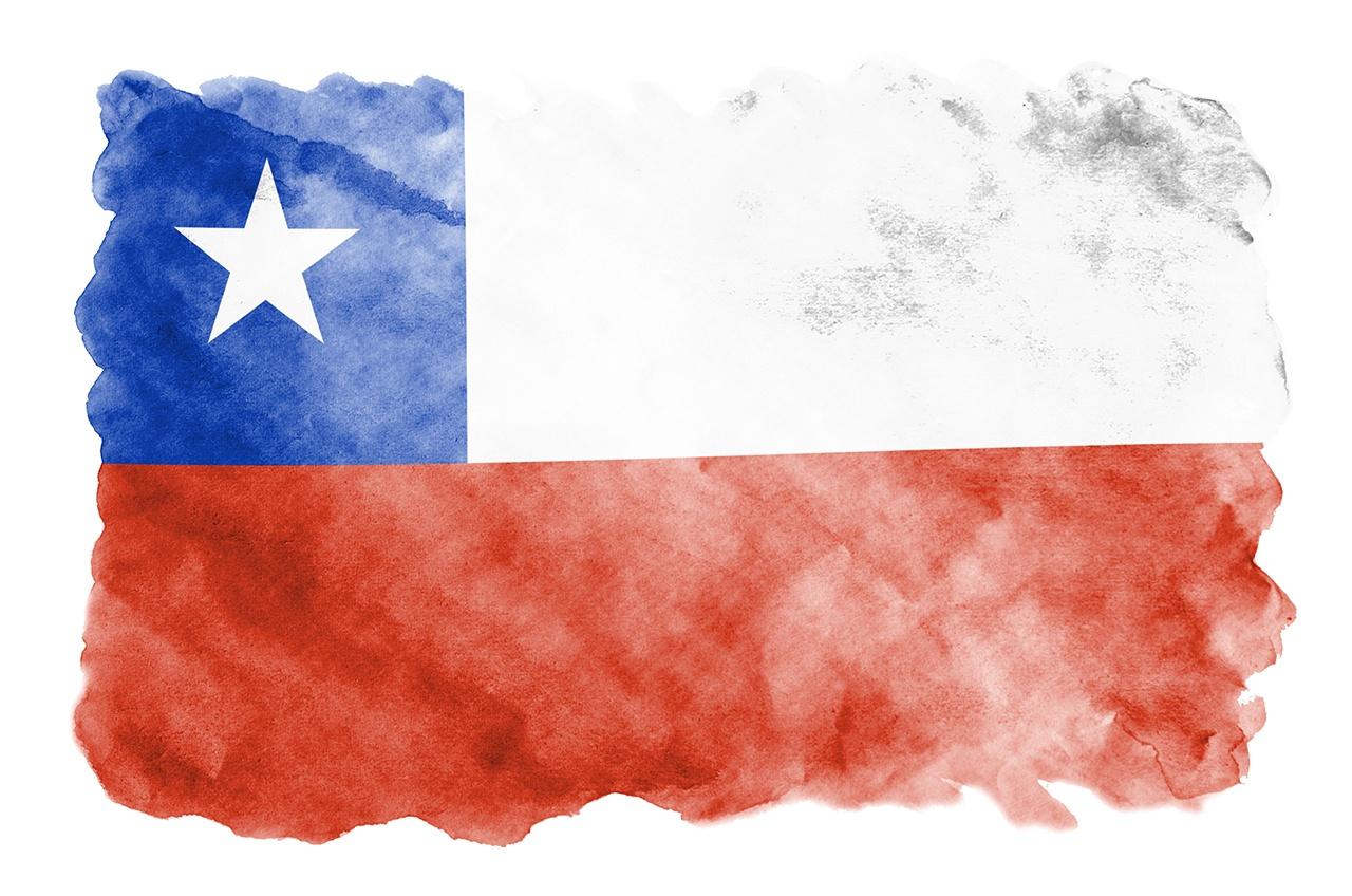 kiwi chileno